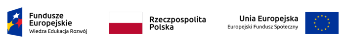 FE_POWER_poziom_pl-1_rgb.png